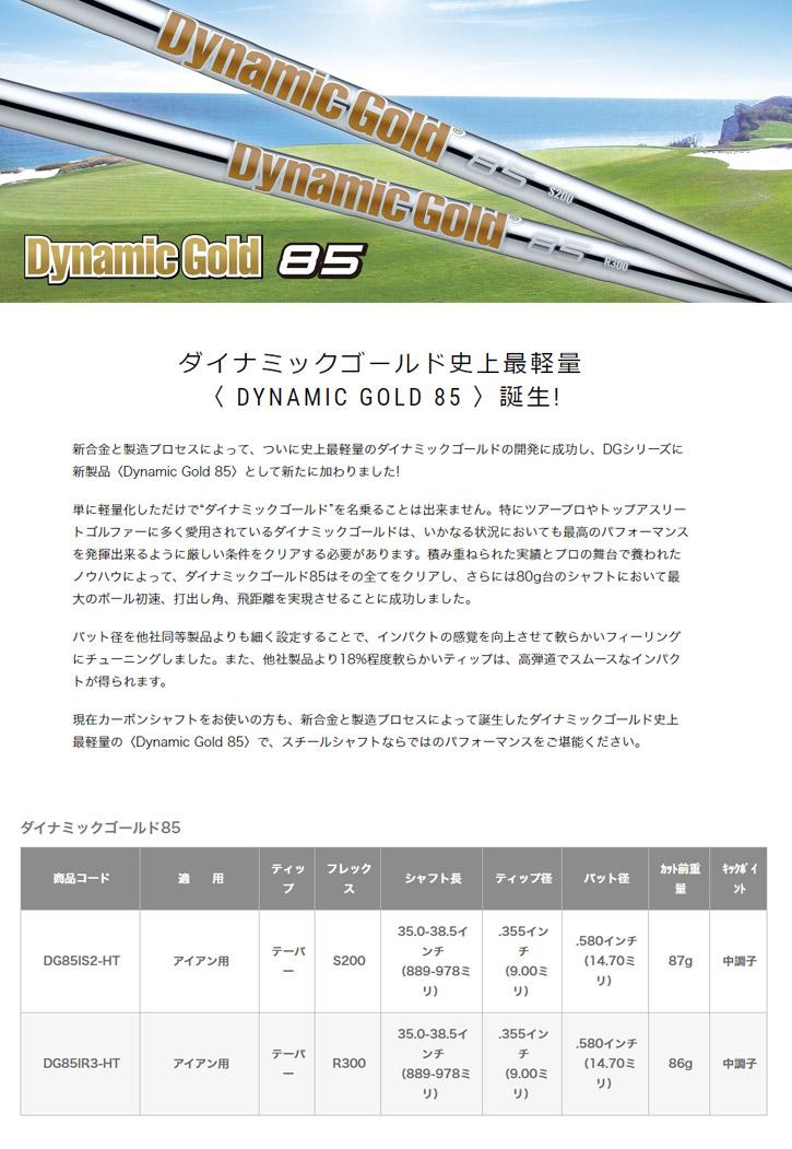 トゥルーテンパー Dynamic Gold 85