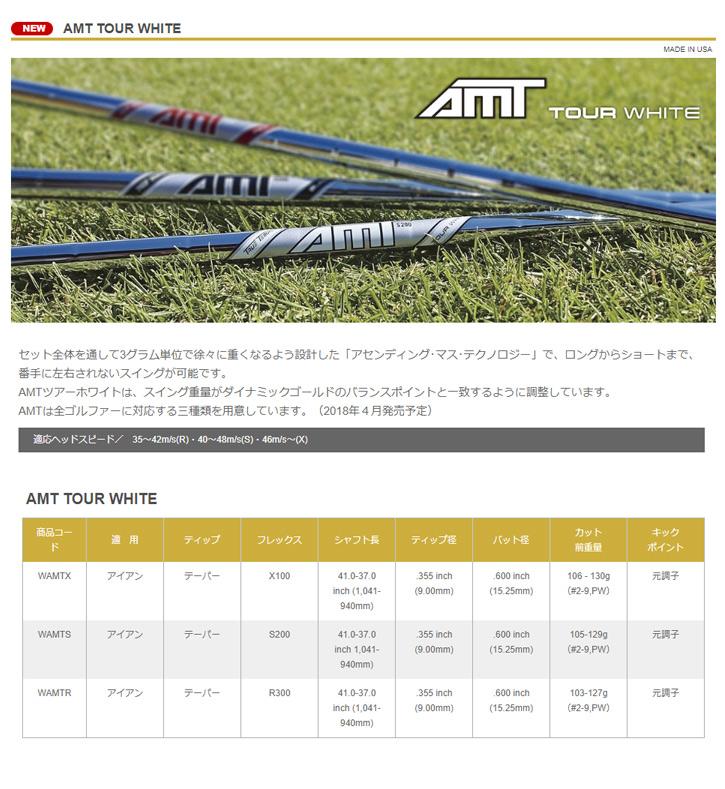 トゥルーテンパー Dynamic Gold AMT RED/BLACK/TOUR WHITE (ダイナミックゴールドAMT RED/BLACK/TOUR WHITE)